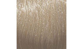 № 11.1 - Special Ash Blond - 60 ml